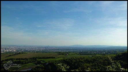 View Over Vienna From Leopoldsberg-003 by Charmadige