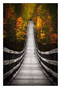 Bridge into Autumn by jjuuhhaa