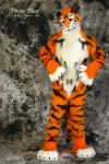 Lucky-Tiger Fursuit Photoshoot #10 by Mystic-Creatures