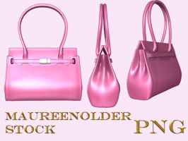 STOCK the hand bag 2 by MaureenOlder