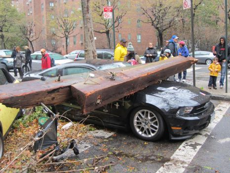 Sandy Killed A Mustang by Darksoul540