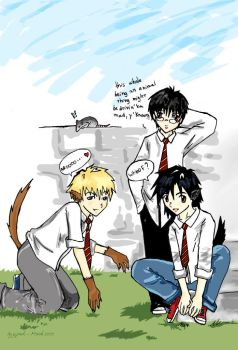 The marauders-g-puck by harrypotterclub