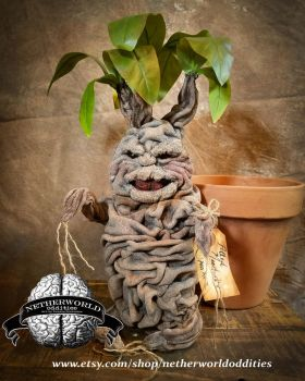 Mandrake by netherworld odditities by pamela Contr by lilpamely
