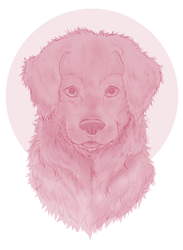 Puppy sketch by xxMiraclesMay