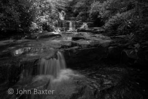 Cascades and Rhododendron by JBaxterPhotography