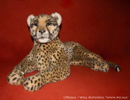 Large Cheetah plush by Jouets Berger from France by dapumakat