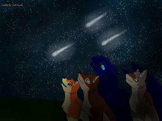 Contest Entry - Shooting stars by Camy-Orca