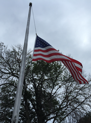 USA Flag on Pole by WDWParksGal-Stock