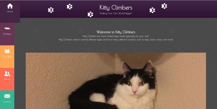 Kitty Climbers Website by JJFryGraphicARTS