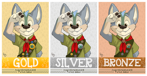 Andy ANW Medals by pandapaco