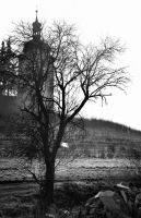 Church tower, tree and plastic bag by JanKacar