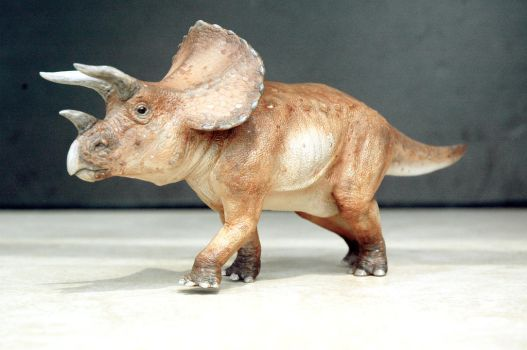 triceratops by hannay1982