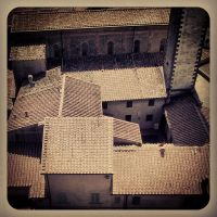 Italy - Roofs of Vinci by siby