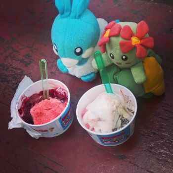 Bellossom, Altaria and ice cream by CGholy