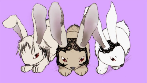 viera bunnies by ceruleandraco