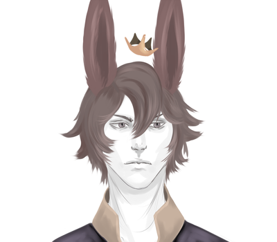 The King Bunny by PrincePorcelain