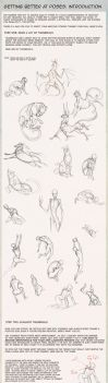 Poses: an introduction by hibbary