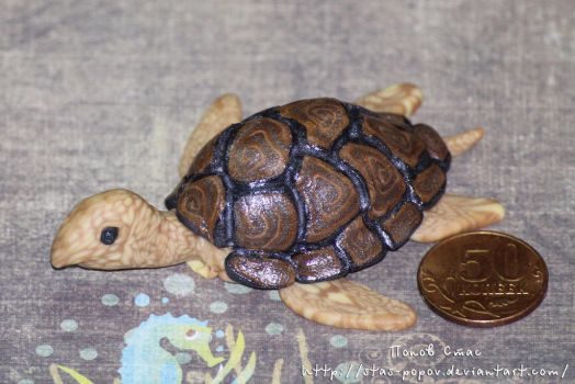 Turtle (Img 4965 1) by Stas-Popov