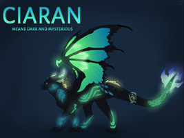 [OPEN] Ciaran Dragon Auction *Lowered Price!* by Zaroclaw