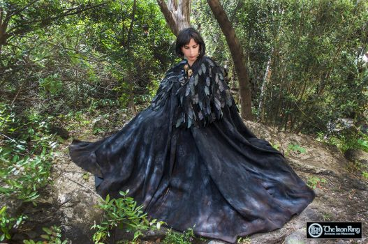 Raven Cloak by TheIronRing