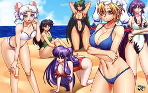 COMMISSION: Kim-Hoyer - Beach Harem by jadenkaiba