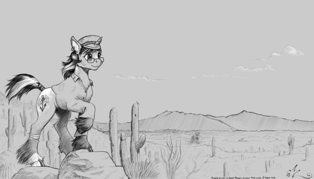 End of the Trail to Tucson by Amarynceus