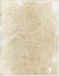 Old Paper 2 - Back by Niedec-STOCK