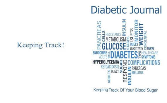 Diabetic Journal Cover  by MoonGazer9