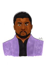 King  T'challa by The-Masterstyle