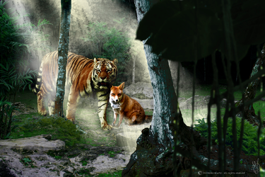 Fox-and-tiger by Silver-M-Studio