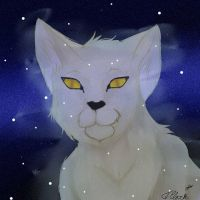 Whitestorm by Rexadecimal
