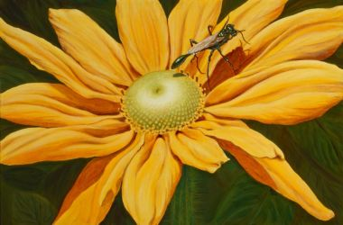 Flower and Bug by ArtByMarionSimmons