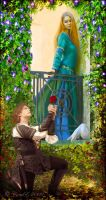 Romeo and Juliet by cemac
