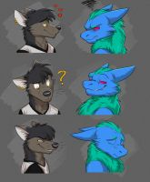 Commission: Fenix and Zayerr's Expression Sheet by Temiree
