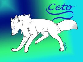 Ceto - Simple and Clean by wolfyrose623