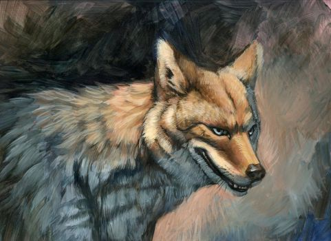 Silver Eyed Coyote by hibbary