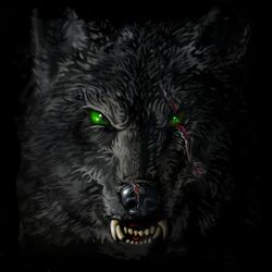 Lone_WolfClose_up by klori