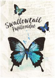 Swallowtail by MagpieMagic