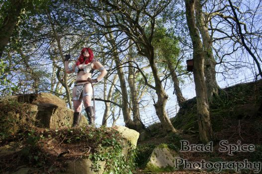 Red Sonja 2 by DARKmousy09