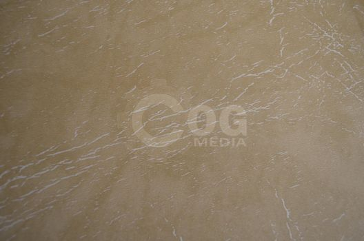 Beige Leather Texture by ecogmedia