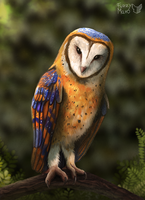 Speedpaint 13#- Owl by FuzzyMaro