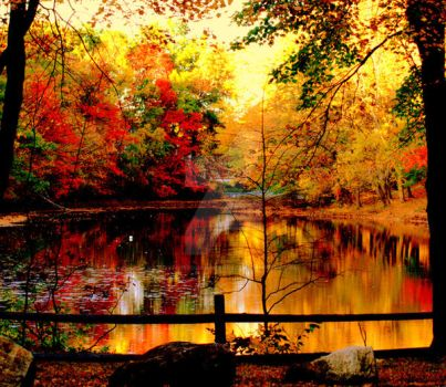 Fall at the Reservoir by LadyPhotographer492