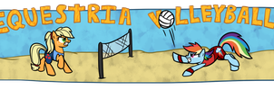 Equestria Volleyball by D0ra0g0n