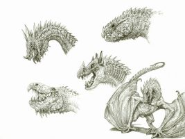 Dragon Sketches 4 by eoghankerrigan