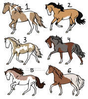 *CHEAP* Horse Adoptables : OPEN by RiverRockStables