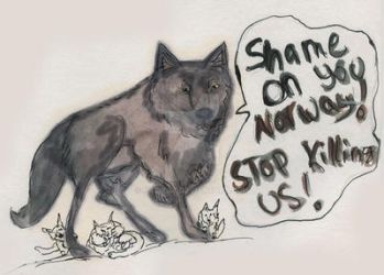Shame on you norway by katikat