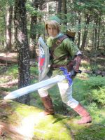 On a mossy log - Twilight Princess Link by Rinkujutsu