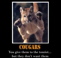 Cougars by Chop-stick