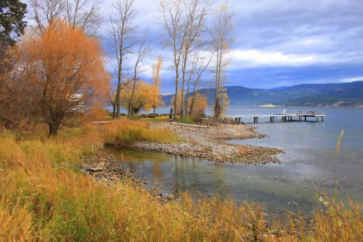Okanagan Lake Nov. 2014 003 by Spillsin
