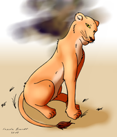 Animal Lioness by lionclaw1
